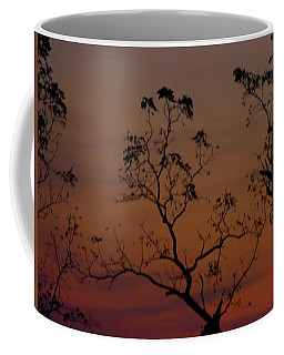Coffee Mug featuring the photograph Tree Top After Sunset by Donald C Morgan