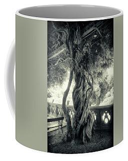 Tree Trunk Bw Series Y6693 Coffee Mug