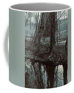 Coffee Mug featuring the photograph Tree Vines Water by Robert G Kernodle