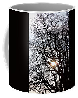 Coffee Mug featuring the photograph Tree With A Heart by James BO Insogna