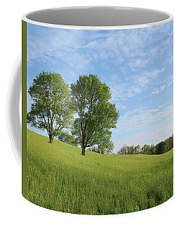 Coffee Mug featuring the photograph Summer Trees 3 by Melinda Blackman