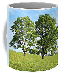 Coffee Mug featuring the photograph Summer Trees 4 by Melinda Blackman
