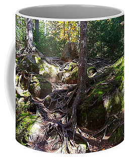 Trees - Mont Tremblant National Park Coffee Mug