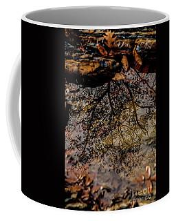 Coffee Mug featuring the photograph Tree's Reflection by Iris Greenwell