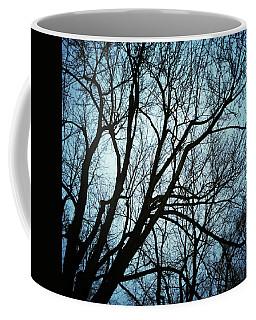 Trees Silhouettes In Moonlight Coffee Mug