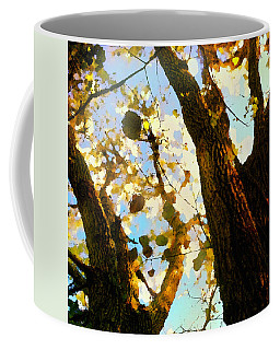 Treetop Abstract-look Up A Tree Coffee Mug