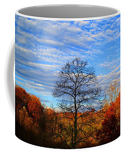 Coffee Mug featuring the photograph Treetops Sunrise by Kathryn Meyer