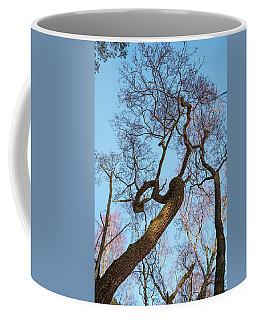 Treetops_risinguptothesky Coffee Mug