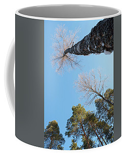 Treetops_the Sky Is The Limit  Coffee Mug