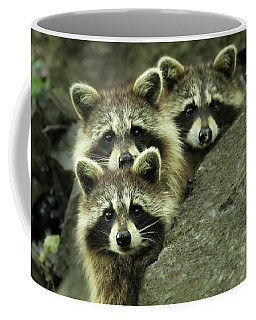 Tres Banditos Coffee Mug