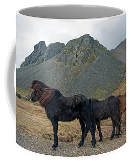 Coffee Mug featuring the photograph Tri - Color Icelandic Horses by Dubi Roman