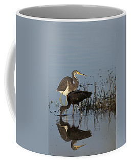 Tri-colored Heron And Glossy Ibis Coffee Mug