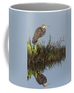Tri-colored Heron And Reflection Coffee Mug