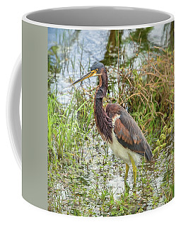 Tri-colored Heron Coffee Mug