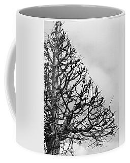 Triangle Tree Coffee Mug