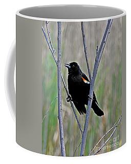 Tricolored Blackbird Coffee Mug