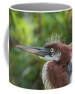 Tricolored Heron - Bad Hair Day Coffee Mug