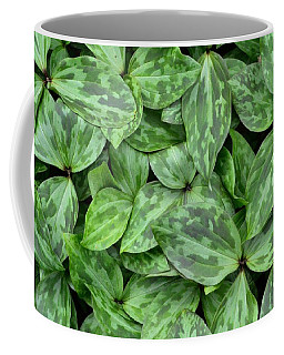Trillium Leaf Quilt #1 Coffee Mug by Tim Good