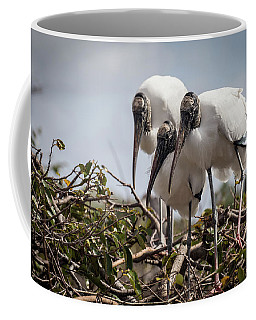 Trio Of Wood Storks Coffee Mug