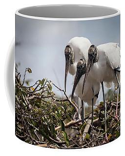 Trio Of Wood Storks Coffee Mug