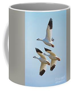 Triple Geese 1 Coffee Mug