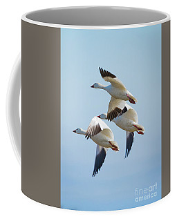 Triple Geese 2 Coffee Mug