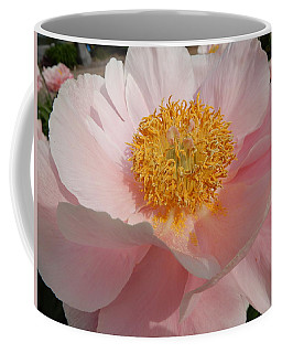 Triple Layer Pink Poppy Coffee Mug