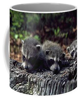 Triplets Coffee Mug by Sally Weigand