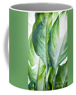 Tropic Abstract  Coffee Mug