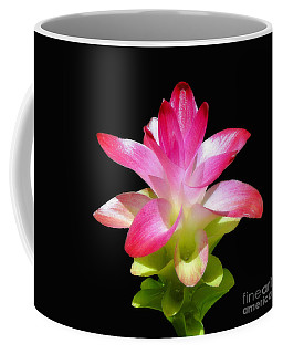 Coffee Mug featuring the photograph Tropical Bliss by Sue Melvin