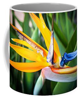 Tropical Closeup Coffee Mug
