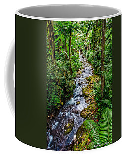 Coffee Mug featuring the photograph Tropical Forest Stream by Christopher Holmes