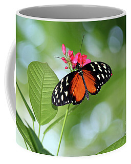 Tropical Hecale Butterfly Coffee Mug