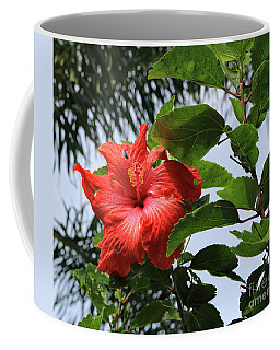 Tropical Hibiscus Coffee Mug by Mary Haber