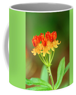 Tropical Milkweed Coffee Mug