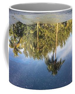 Tropical Reflections Delray Beach Florida  Coffee Mug