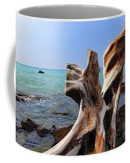 Tropically Weathered II Coffee Mug by Mary Haber