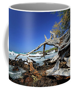 Tropically Weathered IIi Coffee Mug by Mary Haber