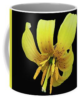 Trout Lily 2 Coffee Mug