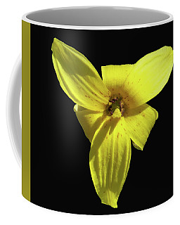 Trout Lily Coffee Mug
