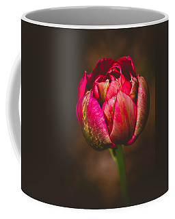 True Colors Coffee Mug by Yvette Van Teeffelen