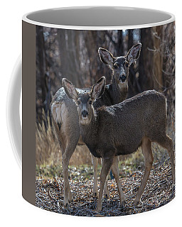 True Genetics Mother And Fawn  Coffee Mug