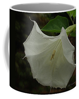 Trumpet In The Rain Coffee Mug