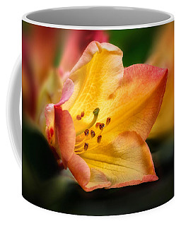 Coffee Mug featuring the photograph Trumpet Of Spring by Mary Jo Allen