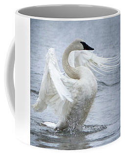 Trumpeter Swan - Misty Display 2 Coffee Mug
