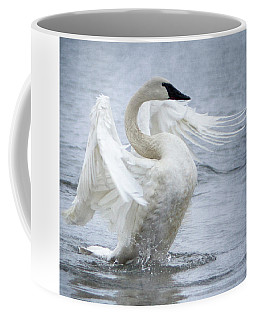 Trumpeter Swan - Misty Display 2 Coffee Mug