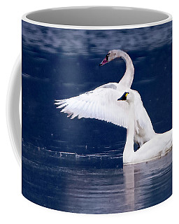 Trumpeter Swans Coffee Mug