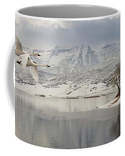 Trumpeter Swans Wintering At Deer Creek Coffee Mug