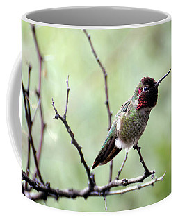Trumpeting Hummingbird Coffee Mug