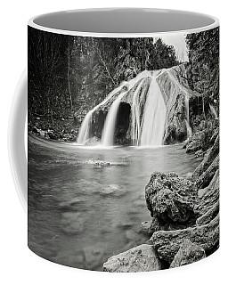 Truner Falls Xxxi Coffee Mug
